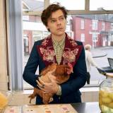 Harry Styles dla Gucci