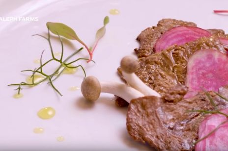 Powstał pierwszy stek bez uboju. Jest wyhodowany w laboratorium i ekologiczny
