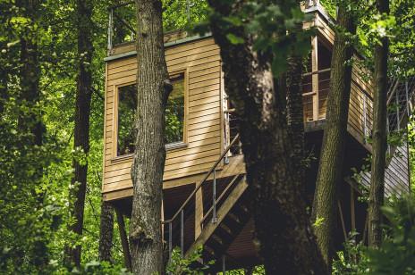 Domki na drzewie do wynajęcia