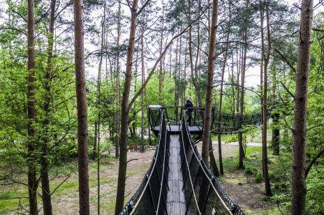 Spacer w koronach drzew w Pomiechówku