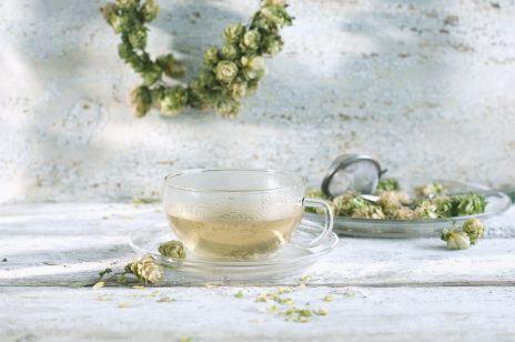 Szyszki chmielu - zioła na bezsenność i stres z apteczki babci. Pomogą jako napar lub dodatek do kąpieli
