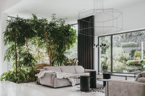 Mała dżungla w nowoczesnym domu na Śląsku
