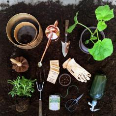 Jak zadbać o ogród?
