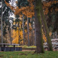 Stoliki do gry w szachy w Parku Skaryszewskim