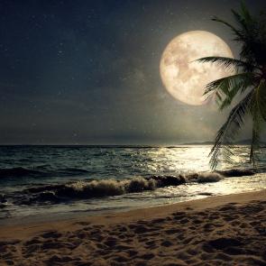 Wieczór na plaży przy blasku księżyca