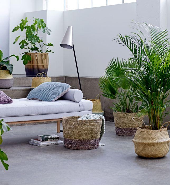 Modernistyczne Kwiaty w domu- prosty sposób na odmianę wnętrza - Elle Decoration UR83