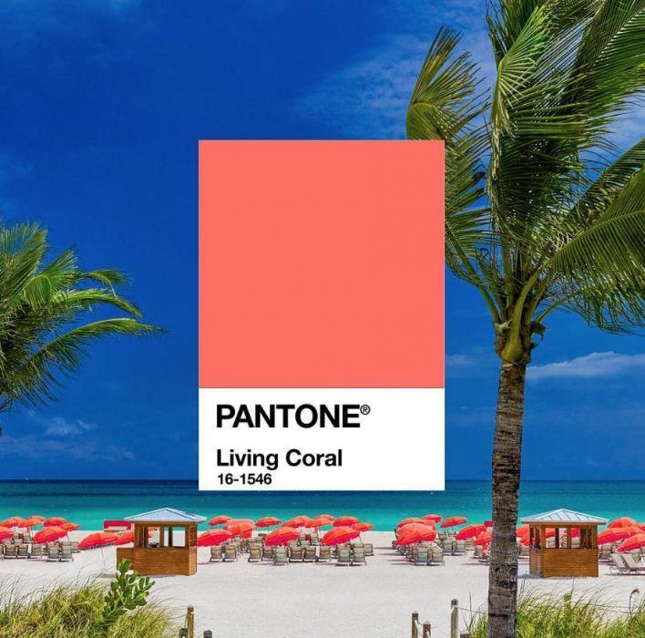 5b4a98a7ed4a74 Kolor roku 2019 Pantone - Living Coral - Elle.pl - trendy wiosna ...