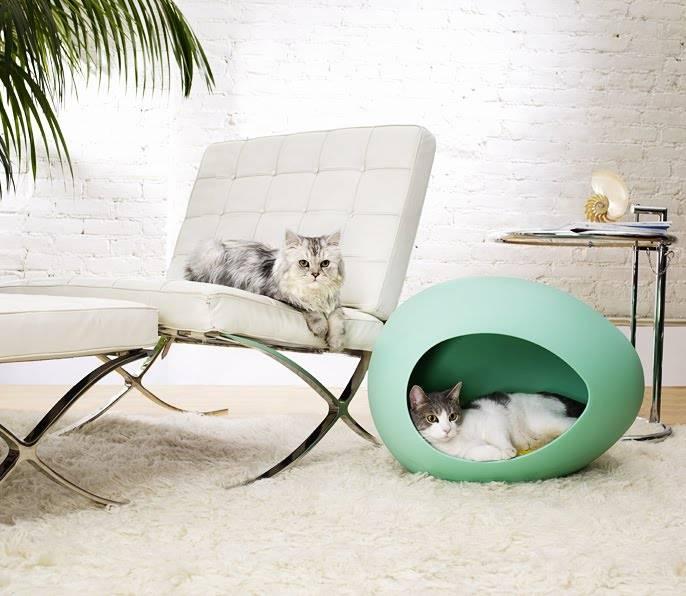 567cdd06406213 Design dla zwierząt - Design dla zwierząt